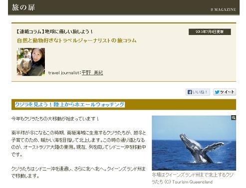 クジラを見よう!陸上からホエールウォッチング