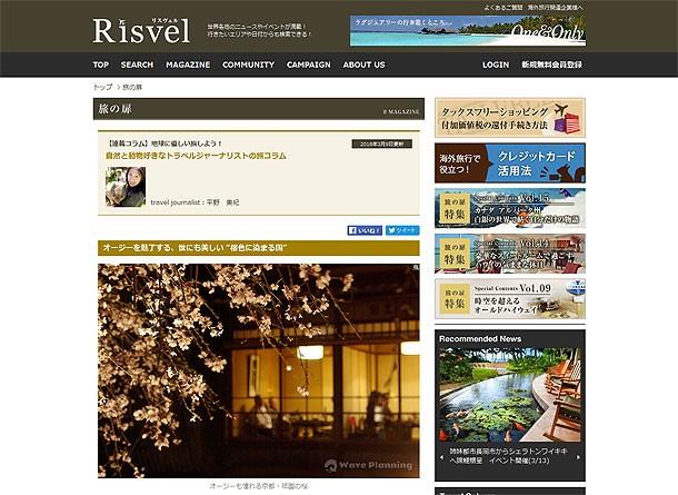 """リスヴェル連載コラム:オージーを魅了する、世にも美しい """"桜色に染まる国"""""""